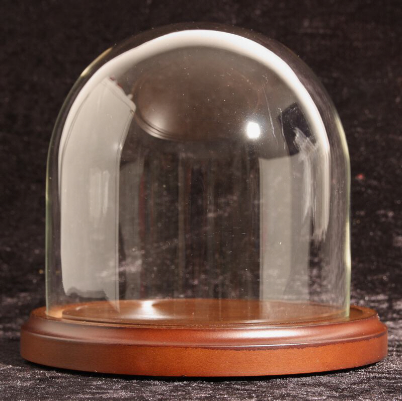 Decorated egg shell : Elegant glass dome and wood base
